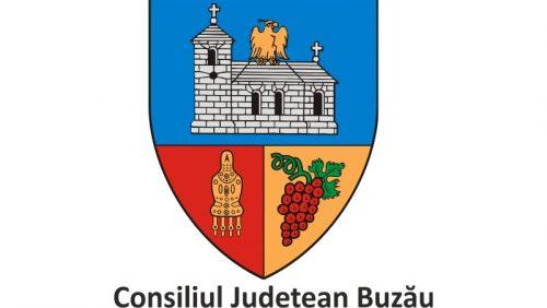 DIRECTIA DE ASISTENTA SOCIALA SI PROTECTIA COPILULUI BUZAU